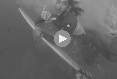 video surf